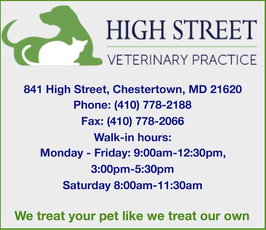 High Street Veterinary Practice